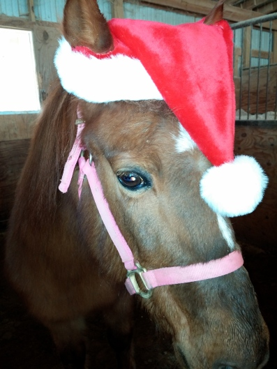 Missy at Christmas